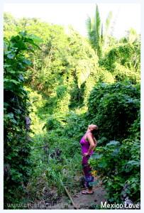 junglebushmoment