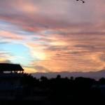 ---viewmorningwindow