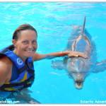 crystal dolphin pai