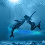 dolphinmermaid